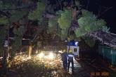 Công nhân ngành điện Yên Bái thức xuyên đêm để khắc phục cấp điện trở lại sau giông lốc và mưa đá xảy tại thành phố Yên Bái và huyện Yên Bình