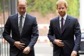 Hoàng tử William từng nhờ cậu ngăn Harry cưới Meghan