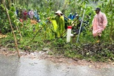 Sạt lở đất ở Quảng Nam, một người chết