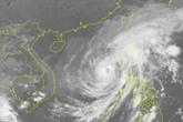 Chuyên gia nói gì về hiện tượng bão số 13 thu nhỏ nhưng cường độ mạnh tăng?