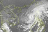 Đề xuất loại tên bão LINFA ra khỏi danh sách các cơn bão gây ảnh hưởng ở khu vực Tây Bắc Thái Bình dương và vùng biển Đông Nam Á