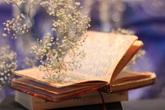 Thâm cung bí sử (222 - 4): Bài thơ cuối cùng
