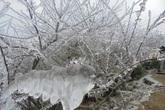 Không khí lạnh liên tục tăng cường, miền Bắc xuất hiện rét đậm, vùng núi có băng giá