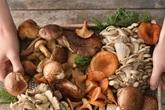 Những sai lầm khi chế biến nấm, điều số 2 cực nhiều chị em mắc phải khiến món ăn không được ngon