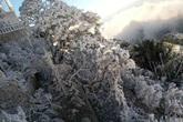 Thời tiết miền Bắc ra sao trước khi không khí lạnh mạnh tràn về gây rét hại vào dịp đầu năm?