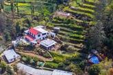 Cuộc sống bình yên trên núi cao của gia đình yêu thích trồng trọt và sống hoàn toàn theo hình thức tự cung tự cấp