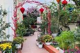 Chồng bỏ tiền mua lốp xe cũ, mẹ 8x trồng hoa, sau 2 năm thành mảnh vườn 200m2 tuyệt đẹp