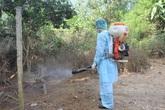 Việt Nam đang đối mặt với nguy cơ về cúm gia cầm bên cạnh dịch corona
