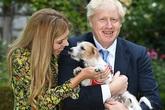 Bạn gái kém 24 tuổi của Thủ tướng Anh mang bầu