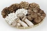 Nấm rất ngon và bổ dưỡng nhưng cần biết tránh cái chết oan uổng cho người nhà khi mùa nấm sinh sôi