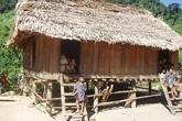 Gần 20 người dân tộc Mày bỏ bản trốn vào rừng vì sợ dịch COVID-19