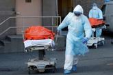 """Số ca tử vong ở Mỹ tăng vọt trở lại, nguy cơ """"vỡ trận"""" ở Brazil, thế giới tìm ra kháng thể có thể chống lại COVID-19"""