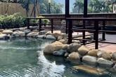 Hải Phòng, Quảng Ninh mở cửa biển trở lại