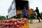 Từ tháng 8/2020, người Hà Nội không cần dùng tiền mặt khi đi chợ