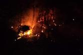 Huy động hơn 700 người trắng đêm khống chế cháy rừng ở Hà Tĩnh