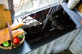 Bếp từ Kanzler - lựa chọn khôn ngoan mùa nắng nóng