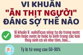 [Infographic] - 'Vi khuẩn ăn thịt người' nguy hiểm thế nào?