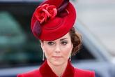 Kate đau lòng vì nội dung 'Finding Freedom'