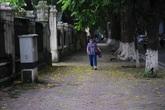 Đẹp nao lòng khoảnh khắc phố phường Hà Nội vào thu