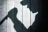 Nghệ An: Bắt đối tượng sát hại vợ trong đêm