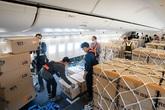Cách 4 hãng bay lớn nhất thế giới có lãi trong mùa dịch