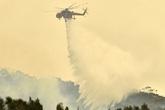 """Bất ngờ cơn """"mưa vàng"""" xoa dịu cơn đau thảm họa cháy rừng tại Úc"""
