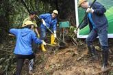 """Nhiều cánh rừng được hồi sinh trong cuộc """"cách mạng"""" trồng rừng kiểu mới"""