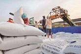Việt Nam có hơn 200 doanh nghiệp đủ điều kiện xuất khẩu gạo