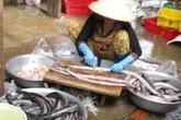 Kinh hãi chế biến chả cá bằng hóa chất, kháng sinh độc hại