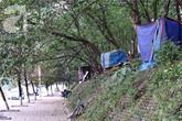 Sốc: Phát hiện 3 hộ gia đình sống trên cây giữa Thủ đô