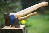 Thiếu niên 14 tuổi dùng rìu chém chết 4 người thân