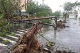 Đà Nẵng tan hoang sau bão số 11