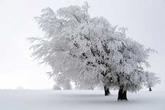 Ngắm 6 cảnh tuyệt đẹp chỉ có vào mùa đông