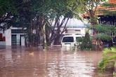 Bình Dương 'tan hoang' trong trận ngập chưa từng có