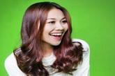 Những sao tỏa sáng trên 'bầu trời' showbiz Việt 2013
