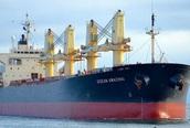 Tàu có thuyền viên mắc COVID-19 đã rời Bà Rịa - Vũng Tàu về Indonesia