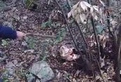 """Kinh hoàng phát hiện xác chết trong khu rừng hoang, dân làng báo cảnh sát và """"danh tính"""" khiến ai nấy giật mình"""