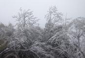 Sương mù giăng dài ngày, rét đậm bao giờ quay trở lại miền Bắc?