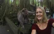"""Đang chụp ảnh """"tự sướng"""", bị khỉ giật tóc"""