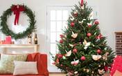 Cách trang trí cây thông Noel đơn giản và đẹp mắt