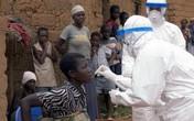Hãi hùng dịch sốt xuất huyết bùng phát do virus giống Ebola