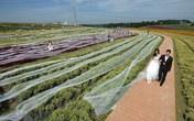 Ngắm chiếc váy cưới dài nhất thế giới 4,8 km