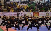 Hà Nội: Sôi động, đẹp mắt hội diễn võ thuật cổ truyền