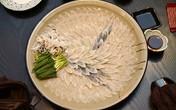 Vì sao người Nhật bỏ nghìn đô ăn cá nóc chết người?