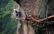 Thót tim trước cảnh công nhân xây đường trên vách núi cheo leo