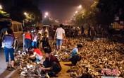 Kinh hoàng hàng nghìn con vịt tràn ra đường phố