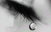 Nước mắt mặn chát của người phụ nữ đẻ thuê cho chồng