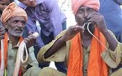 Dị nhân kiếm sống nhờ nhét rắn độc từ mũi qua miệng