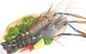 3 hải sản ngon hay dùng nhưng dễ gây ngộ độc