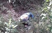 Hé lộ nguyên nhân nữ sinh gục chết trong rừng gây rúng động